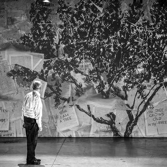 kentridge-arbre